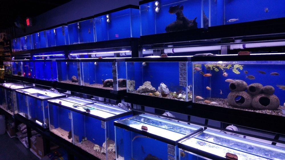 Sea Life Fish & Aquariums: 5250 34th St N, Saint Petersburg, FL
