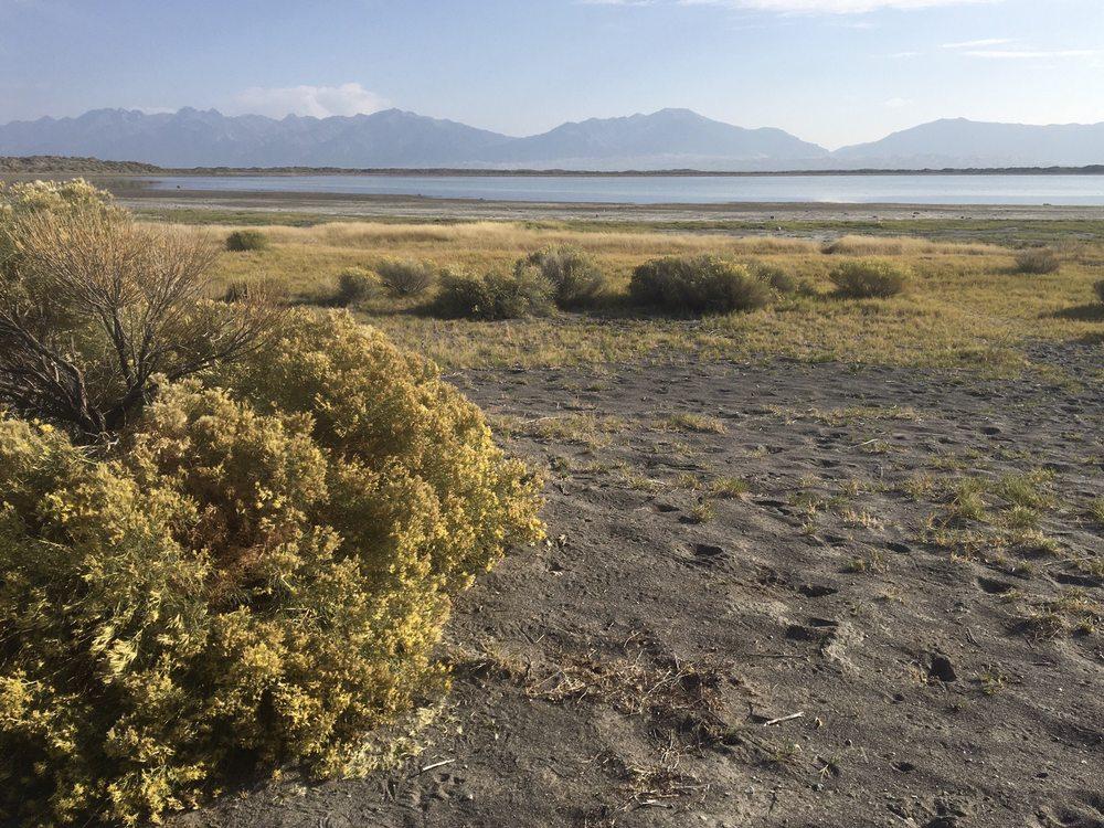 San Luis State Wildlife Area: 16399 Lane 6 N, Mosca, CO