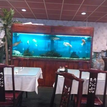 House Of Joy Chinese Restaurant San Antonio Tx