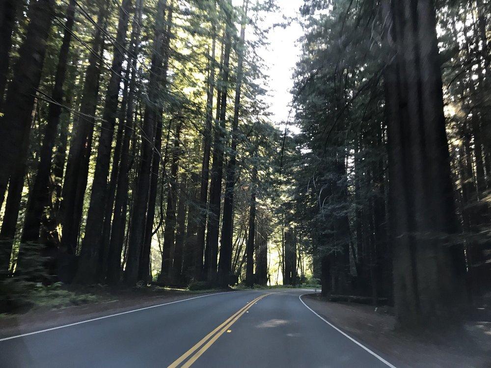 California State Route 128: Navarro, CA