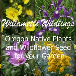 Photo Of Willamette Wildlings Native Plant Nursery Creswell Or United States