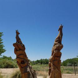 Pueblo montano chainsaw sculpture garden parks 4100 montaño rd