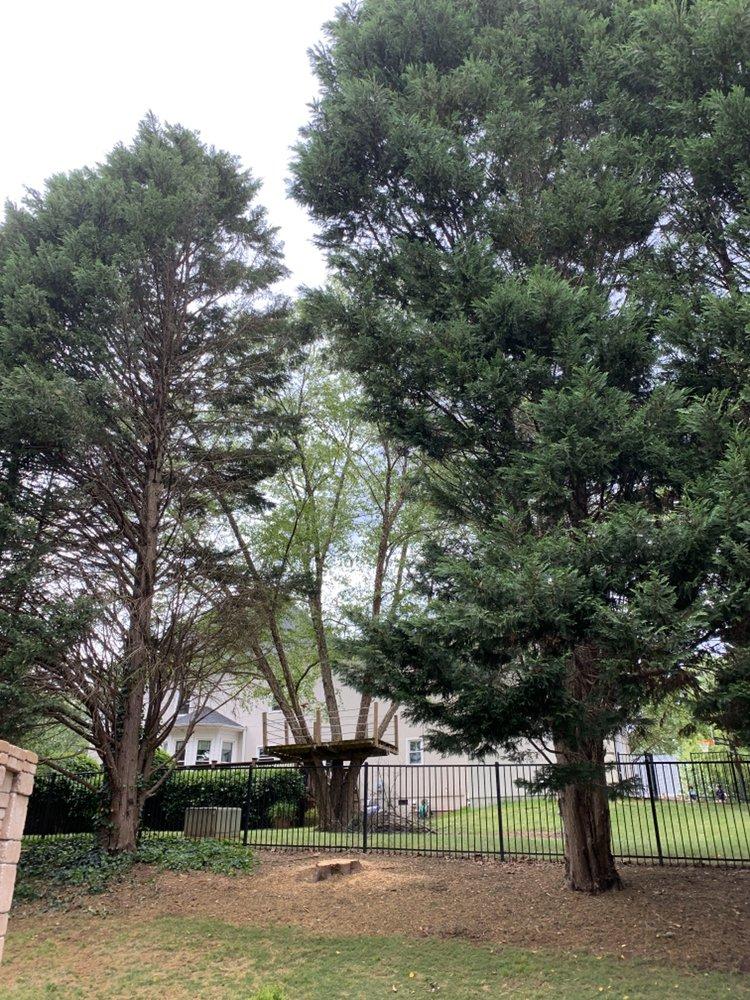 Jags Lawn Service: 461 Cochran Rd, Inman, SC