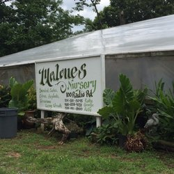 Photo Of Malone S Nursery Charlotte Nc United States This Is The Sign