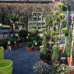 Le clin d oeil du jardinier ferm fleuriste rue de for Jardinier belgique
