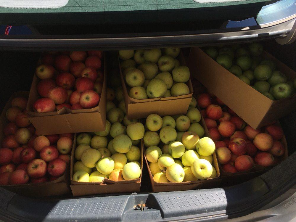 Knob Creek Orchard & Creamery: 6471 Fallston Rd, Lawndale, NC
