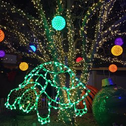 Photo Of Wild Lights At The St. Louis Zoo   Saint Louis, MO, ...
