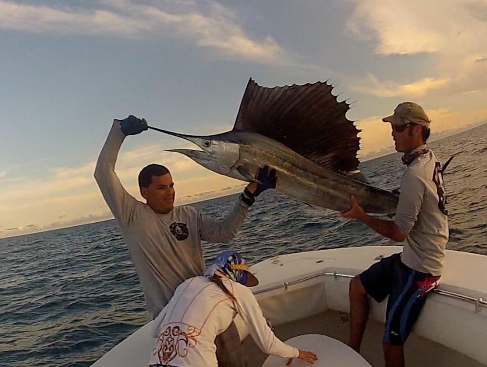 Nice sailfish yelp for Miami fishing guides