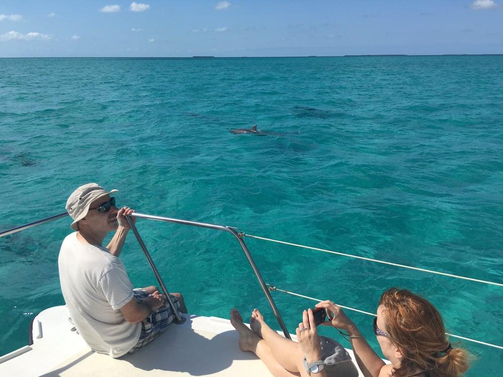 Dolphin Watch: 231 Margaret St, Key West, FL