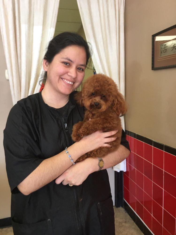 Allure Pet Salon: 900 Indian Trail Lilburn Rd NW, Lilburn, GA