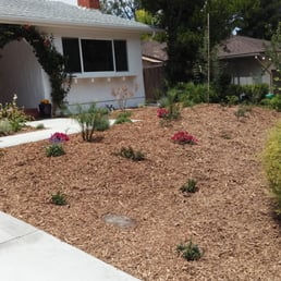 Photo Of Naturescape Services   San Diego, CA, United States. Removed Grass  And