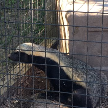 Tanganyika Wildlife Park - 123 Photos & 44 Reviews - Zoos