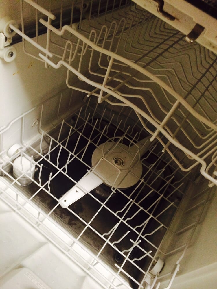 how to clean a moldy dishwasher