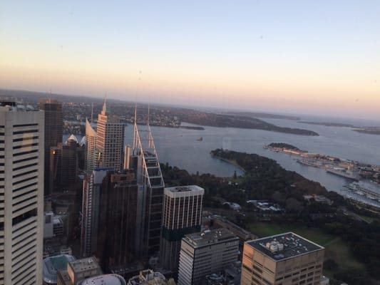 sydney sky tower bar fort - photo#29
