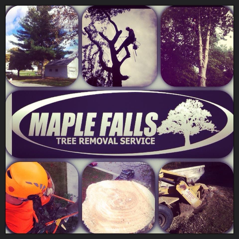 Maple Falls: China Township, MI