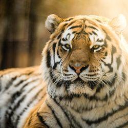 Rosamond Gifford Zoo at Burnet Park 158 Photos 52 Reviews Zoos