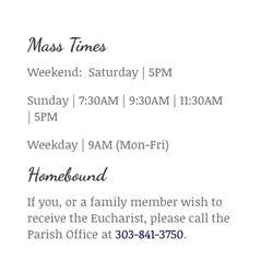Ave Maria Catholic Church - Churches - 9056 E Parker Rd