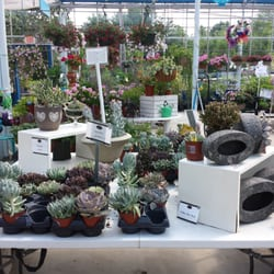 Charmant Photo Of Larsonu0027s Garden Center   Burlington, CT, United States. Succulents