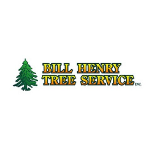 Bill Henry Tree Service Services 47 Prospect Hill Rd Brewster Ny Phone Number Yelp