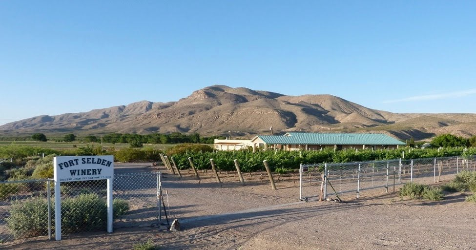 Fort Selden Winery: 1233 Fort Selden Rd, Las Cruces, NM