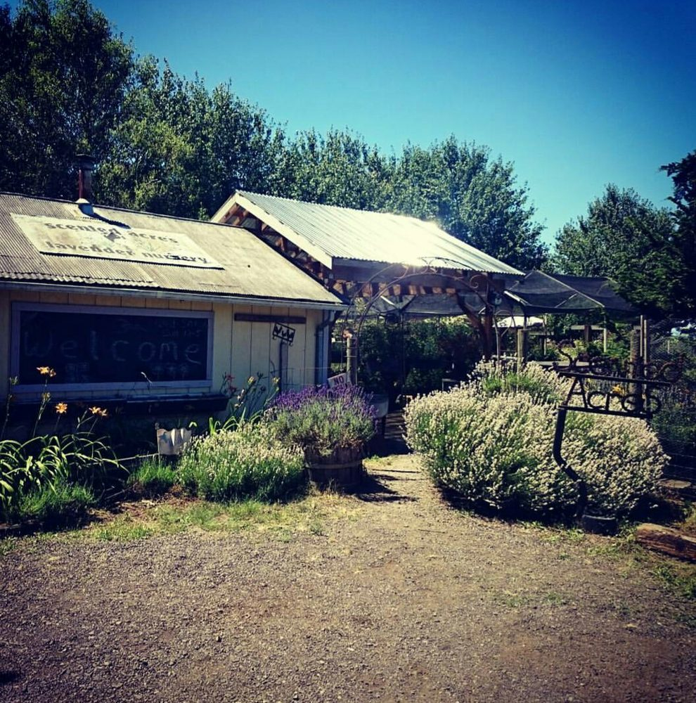 Scented Acres Lavendar Farm: 13804 NE 117th Ave, Vancouver, WA