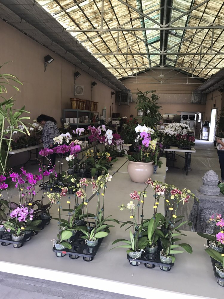 The Orchid Barn   Nurseries U0026 Gardening   11578 W Hwy 152, Dos Palos, CA    Phone Number   Yelp