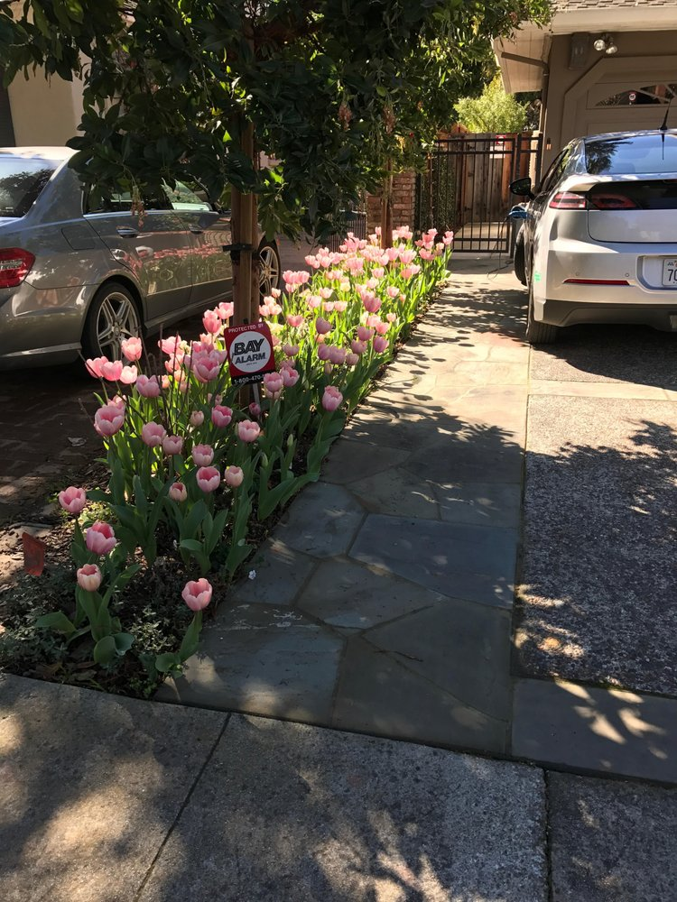 Martinez & Smith Landscaping: Los Altos, CA