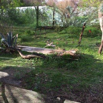 Photo Of San Antonio Botanical Garden   San Antonio, TX, United States