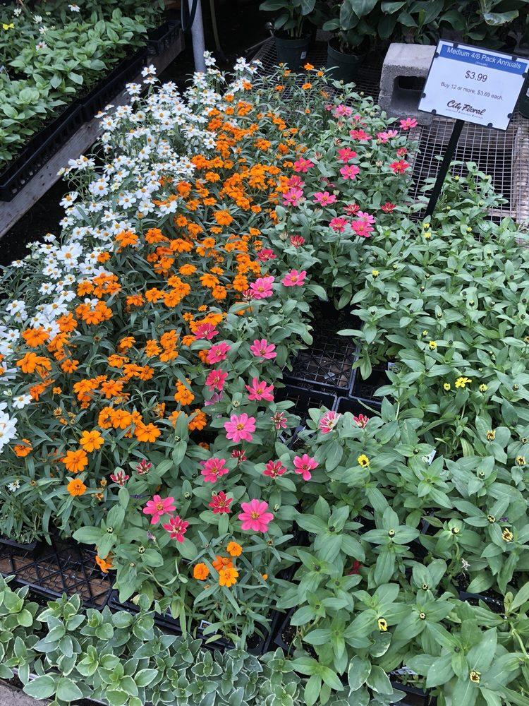 City Floral Garden Center - 48 Photos & 93 Reviews - Nurseries ...