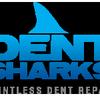 Dent Sharks