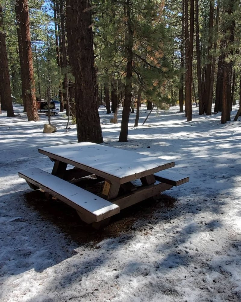New Shady Rest Campground: Sawmill Rd, Mammoth Lakes, CA