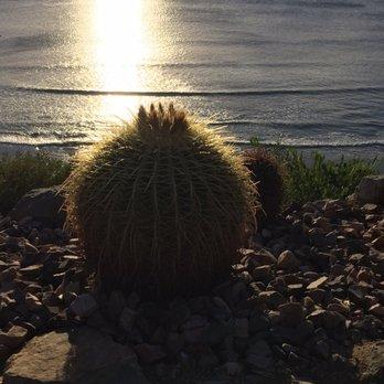 Self Realization Fellowship Hermitage Meditation Gardens 810 Photos 321 Reviews