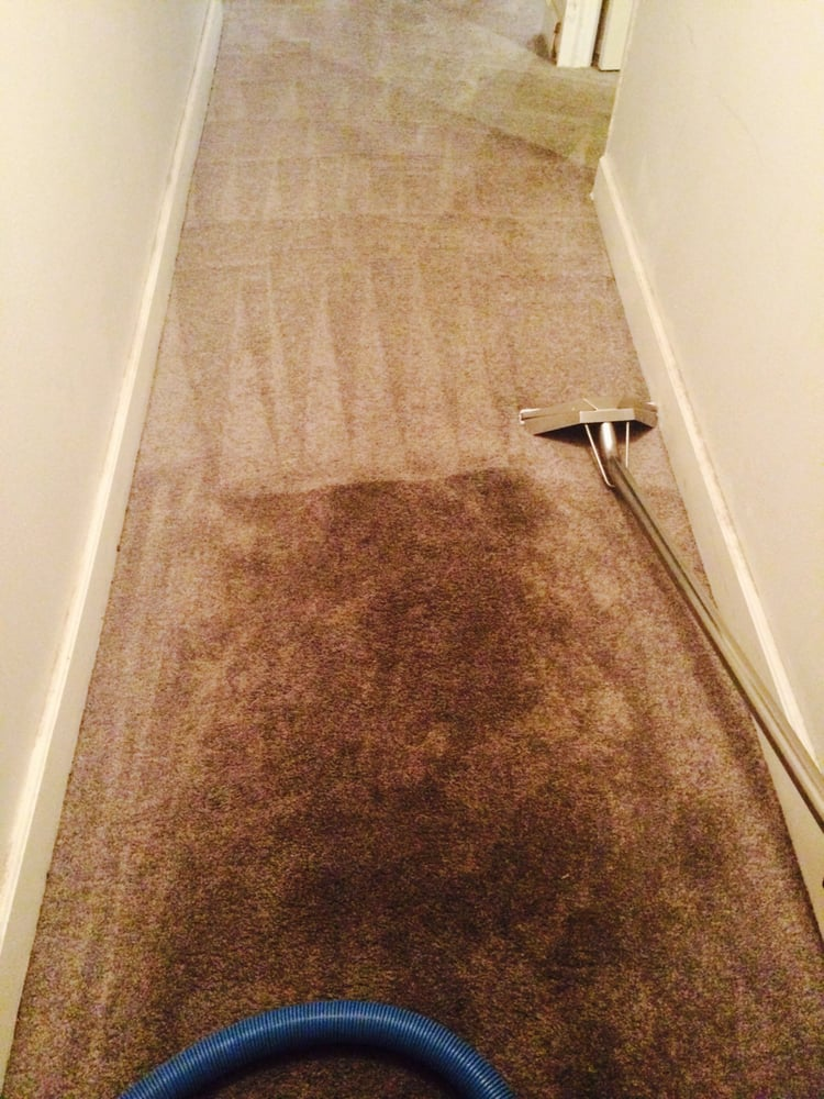 Greasy Hall Way Carpet Half Clean Dirty Yelp