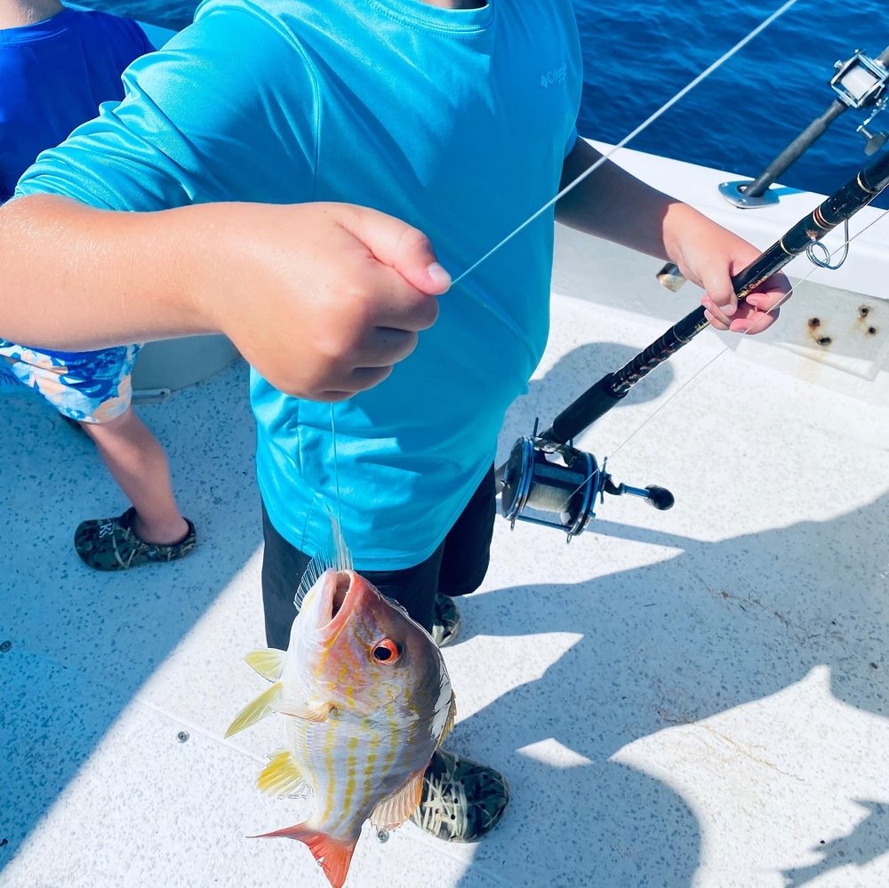 Fish Taxi Charter: 19325 Gulf Blvd, Indian Shores, FL