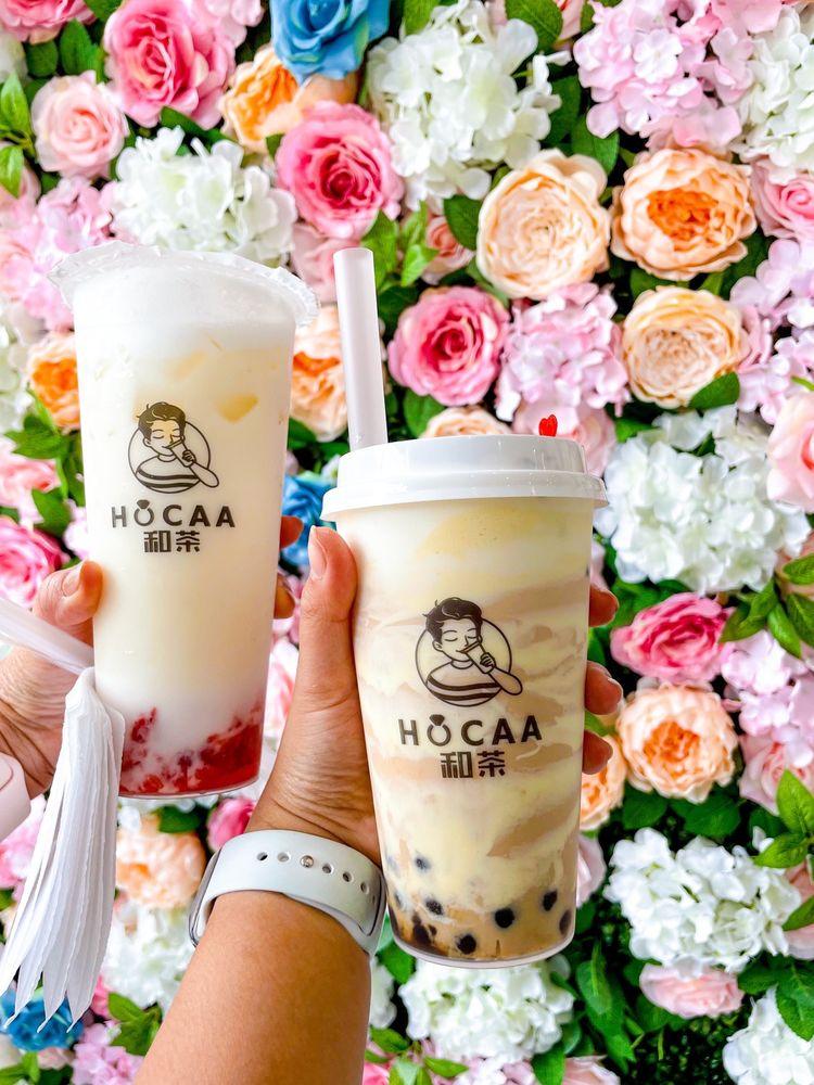 Hocaa Bubble Tea: 220 E 3rd St, Bethlehem, PA