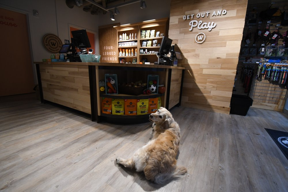 Woodlands Pet Shop: 201 Folsom St, San Francisco, CA
