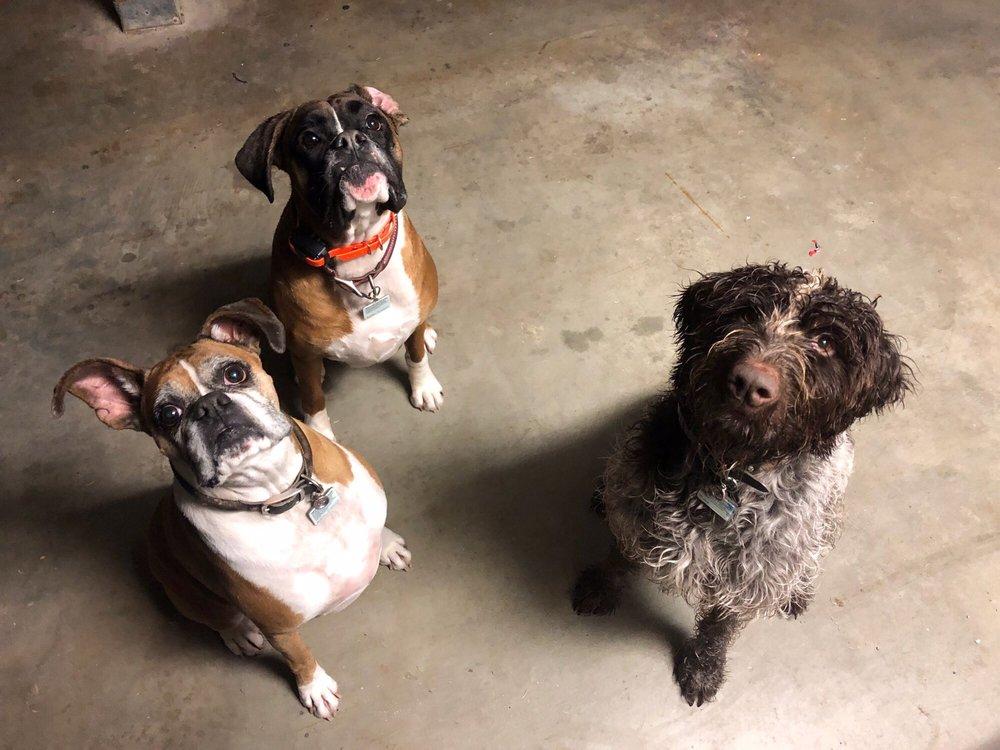 Happy Hearts Pet Care