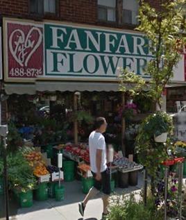 Fanfare Flowers