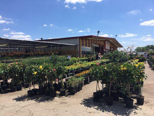Houston garden centers 15427 interstate 45 s conroe tx nurseries mapquest Houston garden centers houston tx