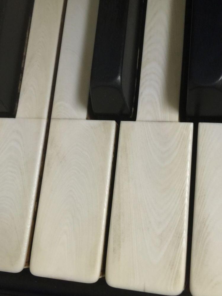 David C Anderson Pianos: Lawton, OK