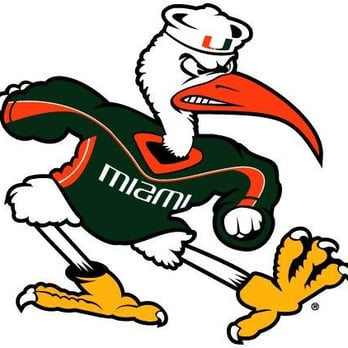 Can I get into the University of Miami or the University of Florida?