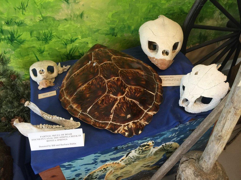 Museum of the Islands: 5728 Sesame Dr, Bokeelia, FL