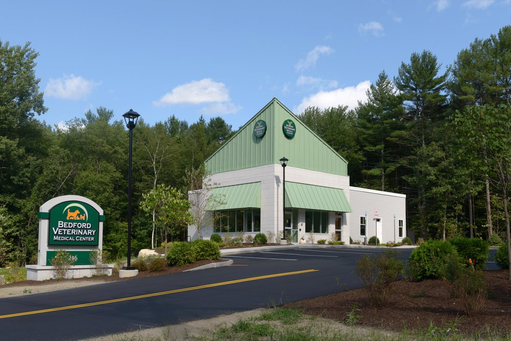 Bedford Veterinary Medical Center: 246 Route 101, Bedford, NH
