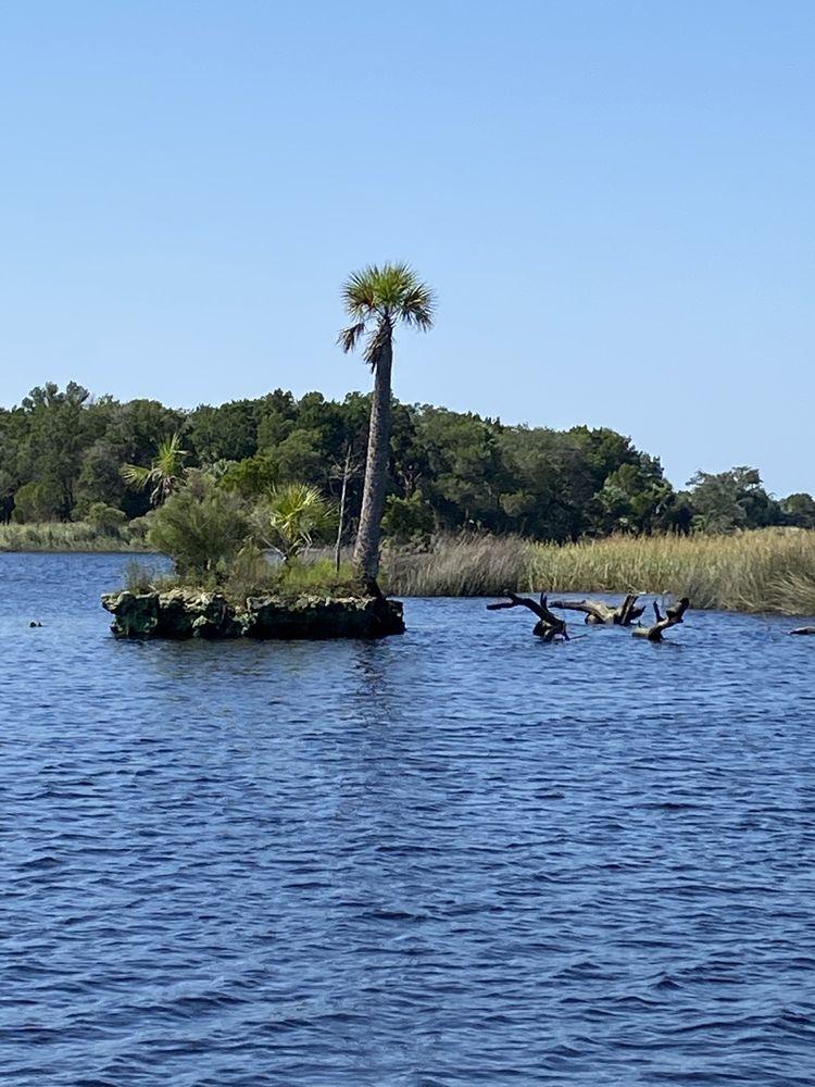 B's Marina & Campground: 6621 Riverside Dr, Yankeetown, FL