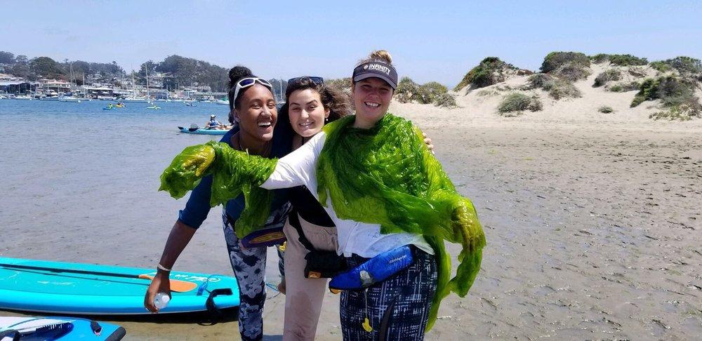 Morro Bay Paddlesports: 551 Embarcadero, Morro Bay, CA