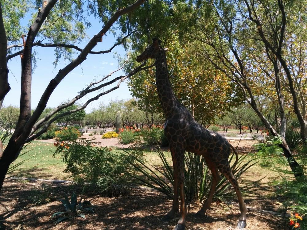 El Parque de Rio Safari Park: 15700 S Rancho Sahuarita Blvd, Sahuarita, AZ