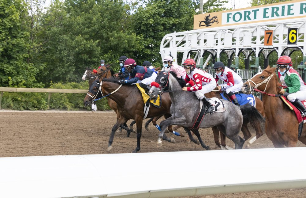 Fort Erie Race Track: 230 Catherine Street, Fort Erie, ON
