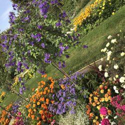 Grandes Serres du Jardin des Plantes - Museum - Allée ...