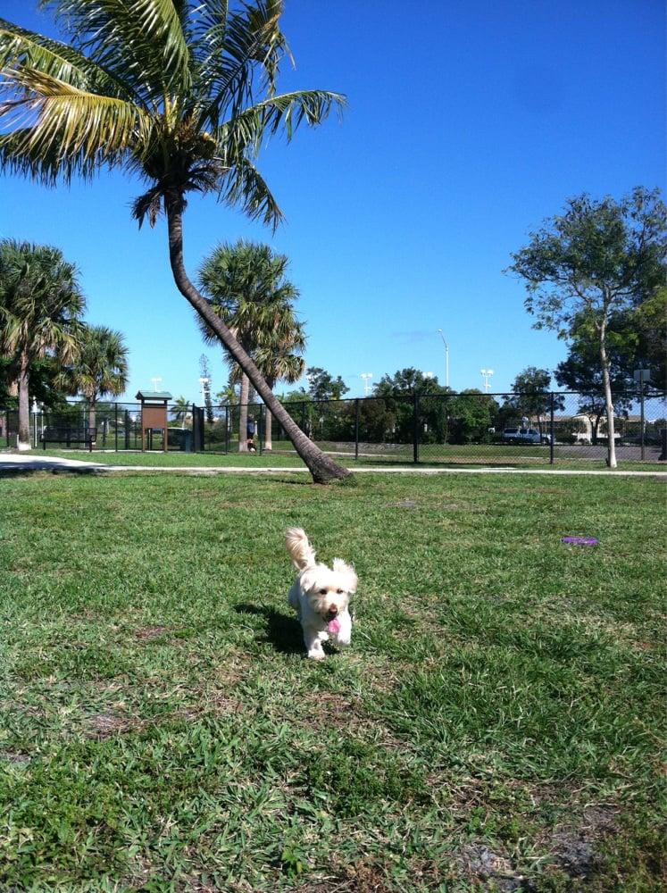 Canine Corner Dog Park