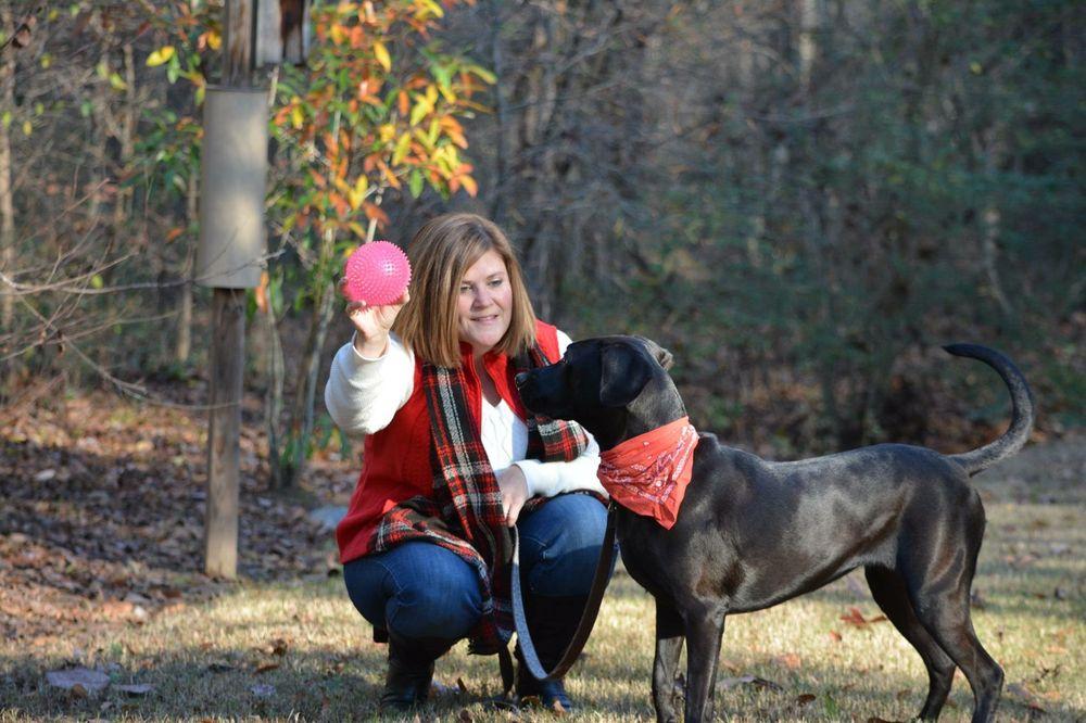 Indian Trail Dog Training: Indian Trail, NC